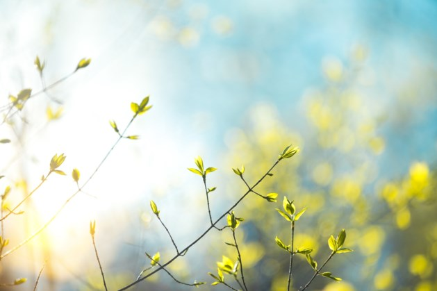 Het blijft mooi weer: opnieuw een zonnig weekend op komst