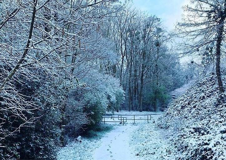 Winterse buien in het zuiden van Limburg