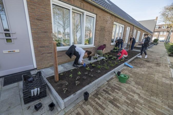 Tuinenfestival maakt Landgraafse buurten groener en vrolijker
