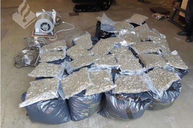 Politie ontdekt voor 700.000 euro hennep in Kerkrade