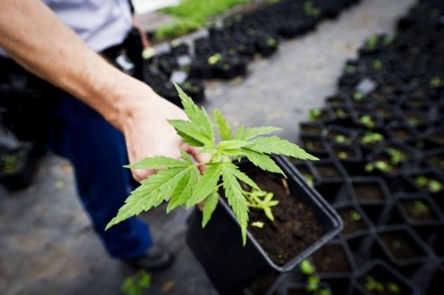 Sloop 'voorkomt' sluiting drugspand Echt