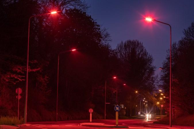 Vleermuisvriendelijke 'lichtshow' met afstandsbediening