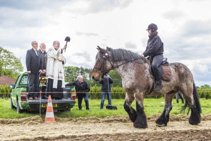 Paardenzegening Lottum voor vriendschap tussen mens en dier