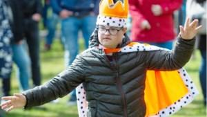 Parkfestival Sittard sluit af met verlies