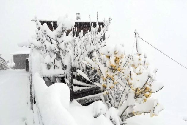 Skiën in de meivakantie? Het sneeuwt weer in de Alpen