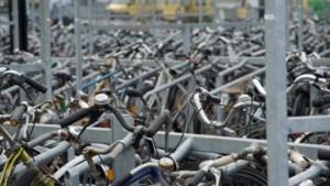 'Grote prijsverschillen fietsverzekeringen'