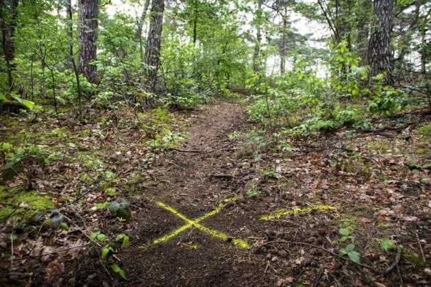 Dubbele moord Brunssummerheide: oma Diny op 400 meter van huis gedood