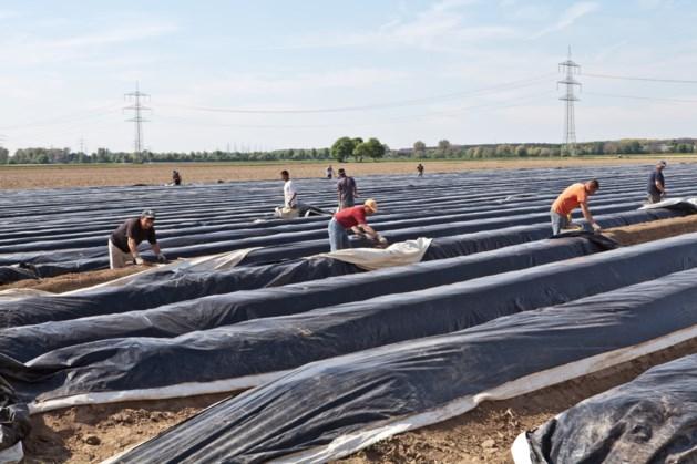 Inval op camping met arbeidsmigranten in Hunsel