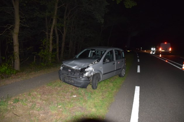 Koe overleden bij aanrijding met drie auto's in Wellerlooi
