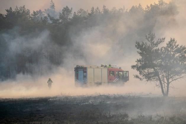 In zand geschreven kenteken leidt politie naar mogelijke stichter heidebrand op Veluwe