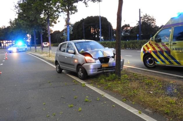 Auto botst tegen boom: bestuurder gewond