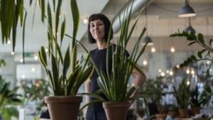 Maureen Bachaus tilde Katakomben in Valkenburg naar ander niveau