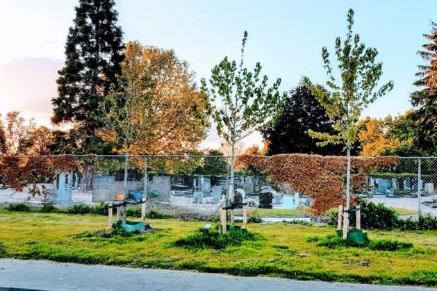 IVN houdt bomenwandeling in Heugem