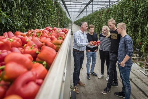 Toename leerlingen in agrosector Noord-Limburg