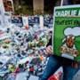 Vaak één dader bij terreuraanslag, kwart aanslagen mislukt