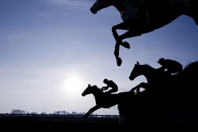 Paardenbezitters op de barricaden vanwege gezondheidsverklaring
