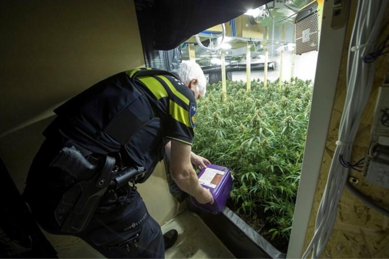 Politie Limburg rolt 'Albanees' drugsnetwerk op