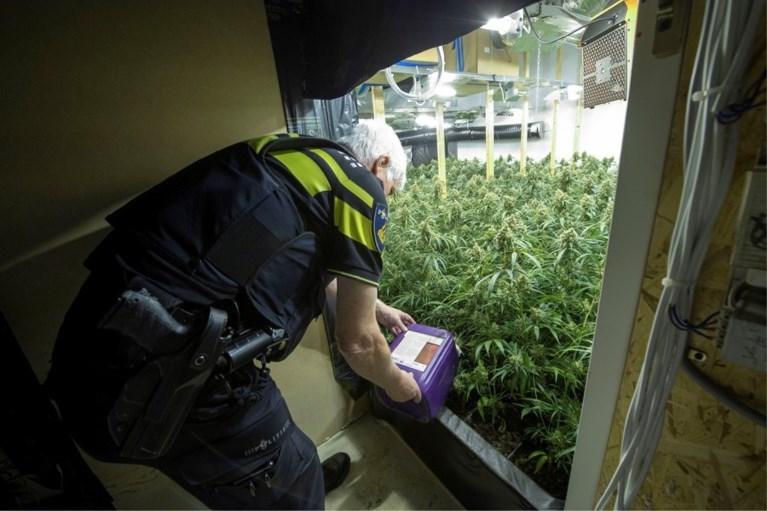 Hoe een grootschalig Albanees drugsnetwerk langzaam voet aan de grond kreeg in Limburg