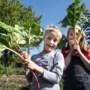 De moestuin is speelparadijs en ontdekhoek voor kids: 'Geef ze de vrijheid'