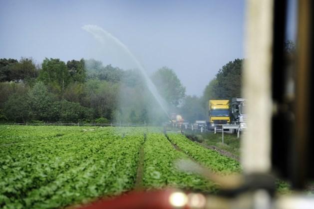 Vanaf vrijdag sproeiverbod in Limburg