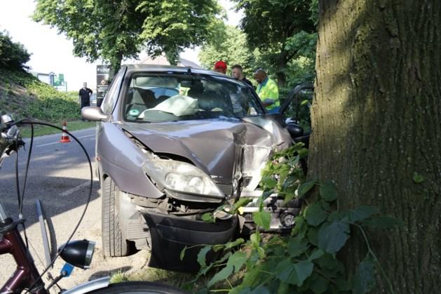 Auto botst tegen boom: bestuurder gewond naar ziekenhuis