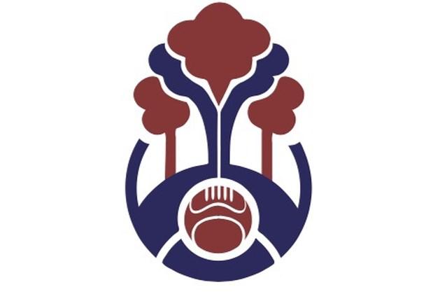 Logo nieuwe voetbalvereniging Woander Forest onthuld
