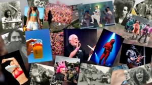 Exclusief bij De Limburger: 50 jaar Pinkpop in beeld