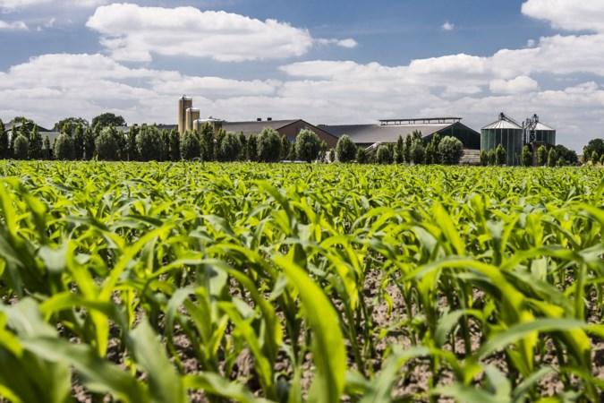 Nederlandse landbouw moet op de duurzame schop