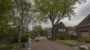 Gesprek over bomen Schuttersveld Brunssum