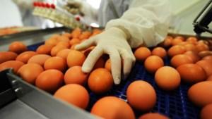 Onderzoek: 'Voedselveiligheid in gevarenzone'