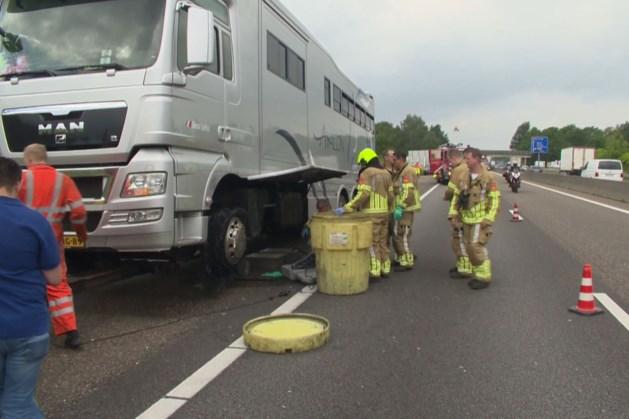 Vrachtauto met paarden krijgt klapband: ravage op A67