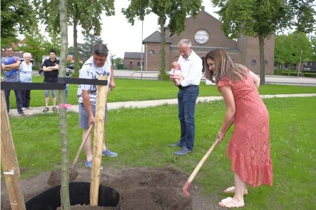 Appelboom voor vijftigduizendste inwoner van Weert