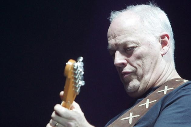 Veiling van Pink Floyd-gitaren levert miljoenen op voor goed doel