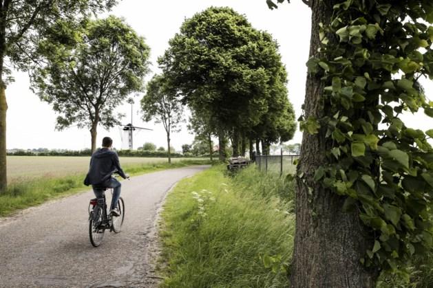 Plannen van nieuwe college voor provincie Limburg: veel bomen en een referendum