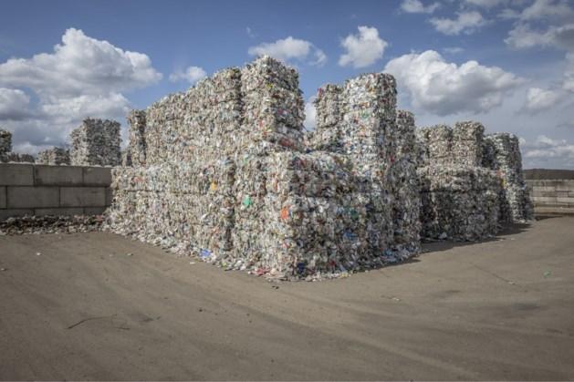 Vliegenoverlast: Brunssumse recycler in overtreding