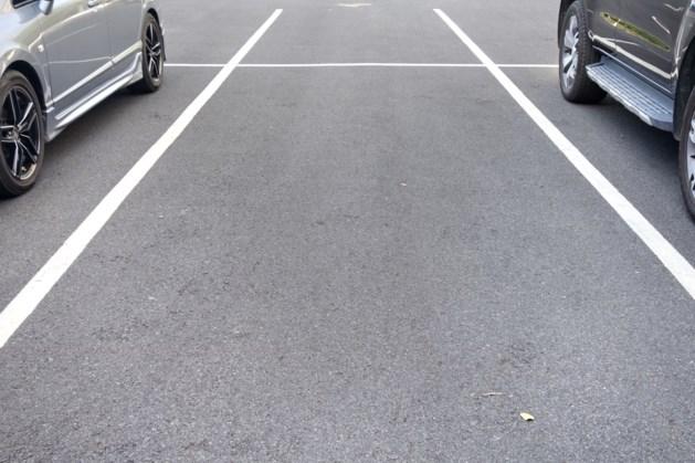 Parkeervakken bij fysio Engels in Echt