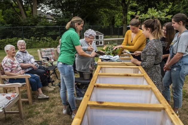 Leerlingen Dendron College maken groentetuintjes voor bewoners van Molenveldhuis