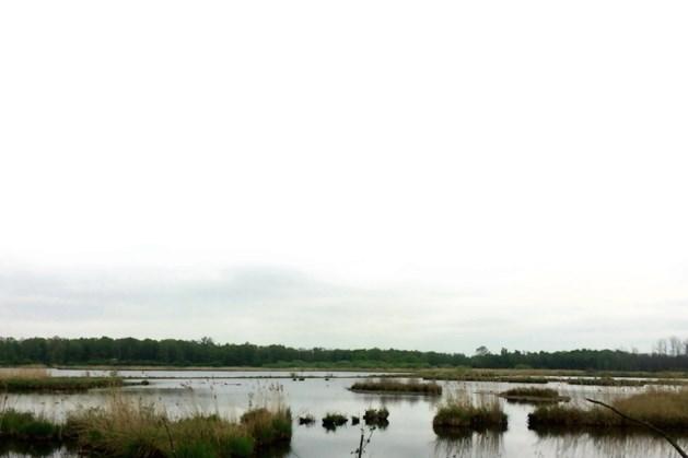 Aanvraag voor Kempen-Broek als UNESCO-gebied