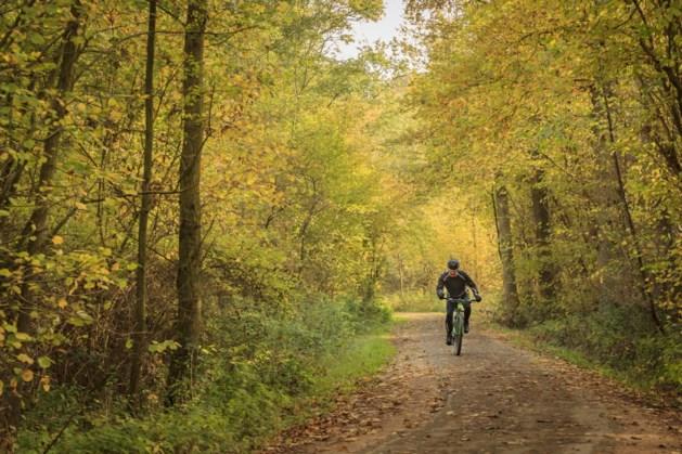 Plan voor nieuwe natuur ten zuiden van Susteren