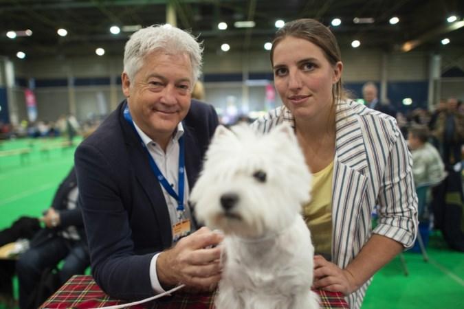 Hondenshow Maastricht werkt samen met actiegroep aan dierenwelzijn