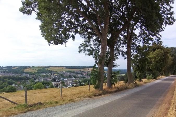 Parkeerverbod langs Panoramaweg op Gulperberg