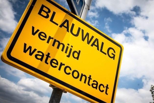 Waarschuwing voor blauwalgen in zwemplas Elfenmeer ingetrokken