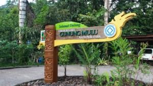 Nederlander verdronken in Maleisische grot