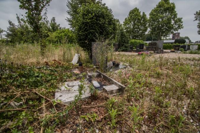 Onkruid groeit Geleense kerkhofbeheerders boven het hoofd