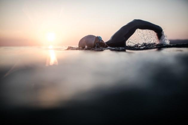 Bergen wil meer beleving rond zwemplas Seurenheide