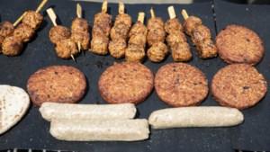 Zomerbarbecue in Sittard voor hiv-patiënten