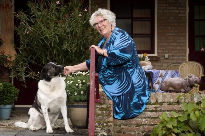 Partij voor de Dieren in Heerlen pleit voor opvang voor dieren bij huiselijk geweld