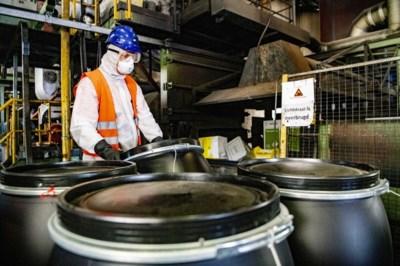 Hier gaan duizenden kilo's eikenprocessierups in vlammen op: 'In de eerste oven is het al met ze gedaan'