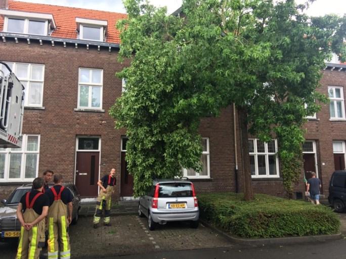 Overlast door noodweer in Limburg, windhozen op terrein ZLF