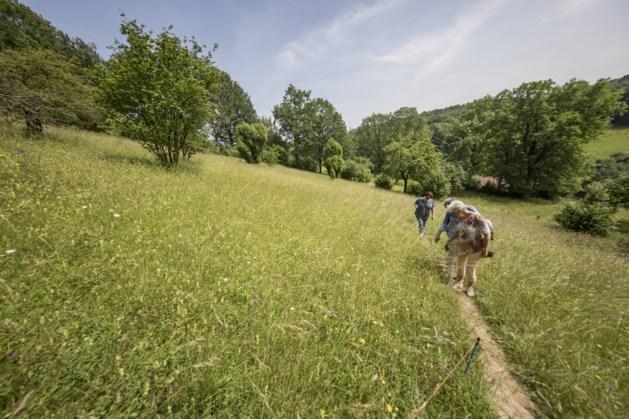Valkenburg zet vrijwilligers in het zonnetje